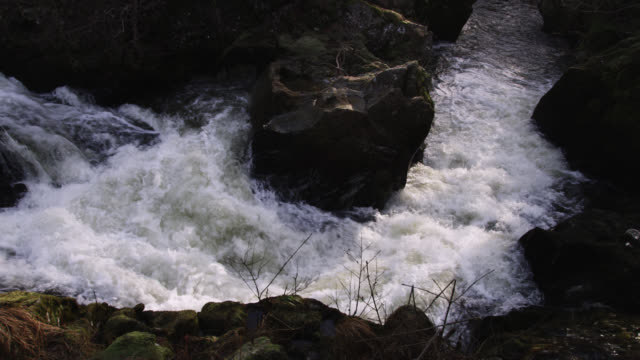 foaming river rapids, powys, wales - rapid stock videos and b-roll footage
