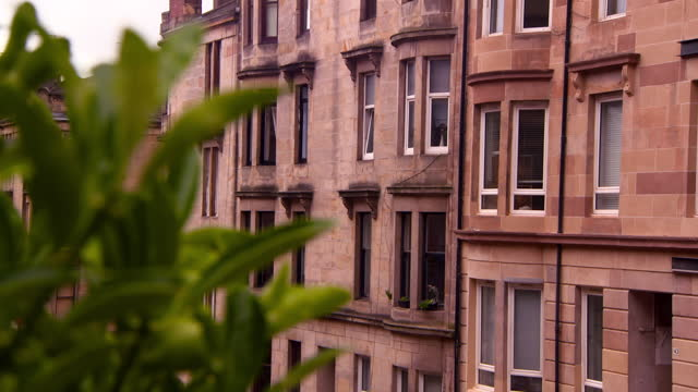 focus transition from green leaves to georgian red sandstone tenement building under overcast sky - glasgow, scotland - ジョージア調点の映像素材/bロール
