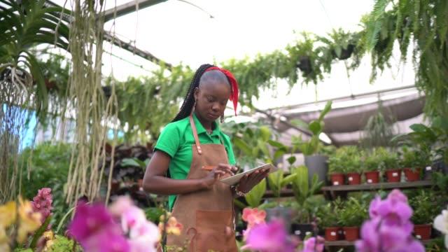 focused employee working in a flower shop - gardening stock videos & royalty-free footage