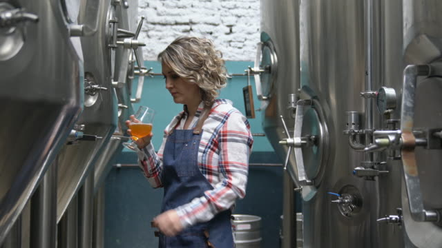 focused female brewery worker checking sample for clarity - apron stock videos & royalty-free footage