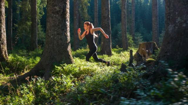 vídeos de stock, filmes e b-roll de concentrado corredor treinamento na floresta - prova de pista