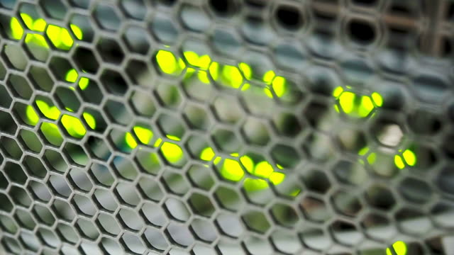 Focusing network switch flashing