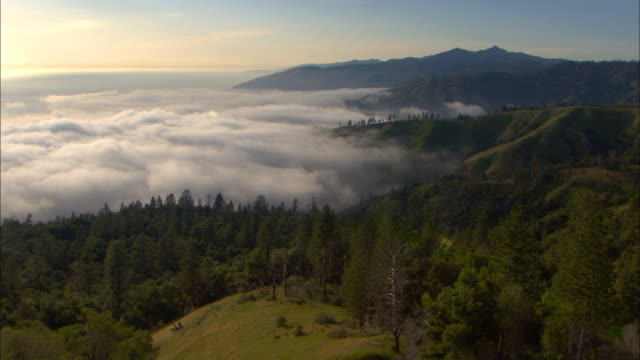 Fog and clouds blanket a mountain valley covered with pine trees at Big Sur in Monterey County, California.