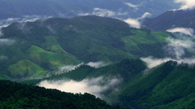ZO, le brouillard et la brume sur la chaîne de montagnes de couche vue de paysage