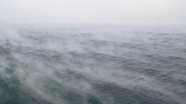 fog and sea - spray stock videos & royalty-free footage