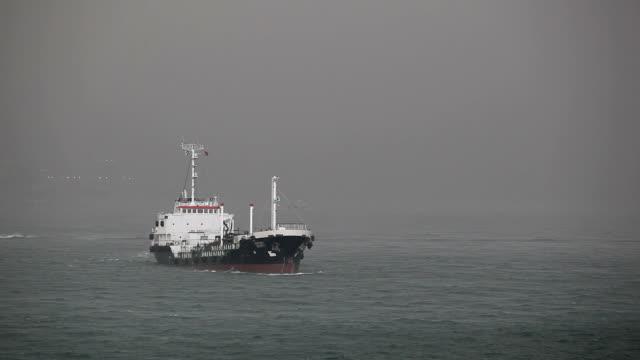 霧に出荷 - 食糧を捜す点の映像素材/bロール