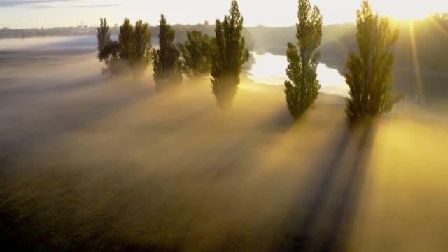 nebel bei sonnenaufgang in der nähe des flusses - wiese stock-videos und b-roll-filmmaterial