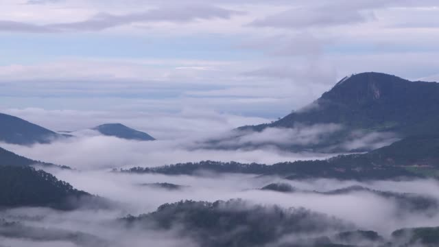 fog & cloud in the mountains at dawn - vietnam stock videos & royalty-free footage