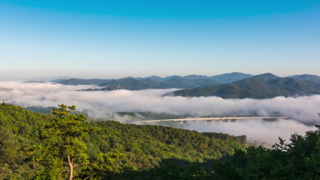 stockvideo's en b-roll-footage met fog covering 2nd gageumgyo bridge, filmmed in jangmisan mountain / chungju-si, chungcheongbuk-do, south korea - plate met stilstaande achtergrond