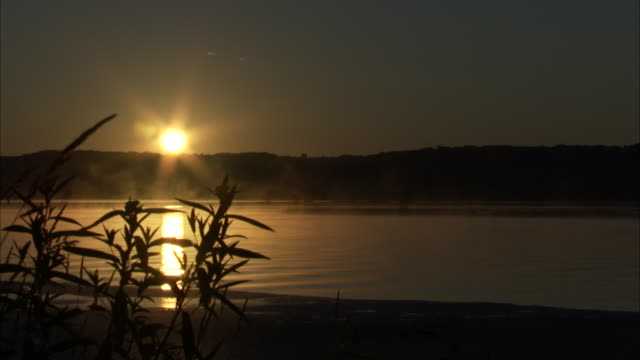 fog drifts across a river during sunrise. - weltraum und astronomie stock-videos und b-roll-filmmaterial