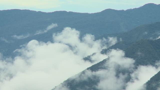 fog engulfing mountainous forest - gebäudefries stock-videos und b-roll-filmmaterial