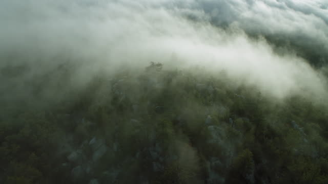 vídeos de stock, filmes e b-roll de fog enshrouds mountain top in ca - top