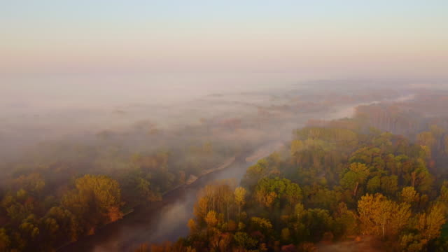 aerial fog floating over the river - prekmurje stock videos & royalty-free footage