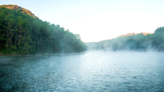 fog flowing on lake in the morning at pang ung forestry plantations, mae hong son province, thailand - mae hong son province stock videos and b-roll footage
