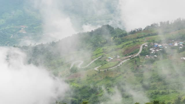 fog flowing over tropical mountains and village. timelase video - pinaceae stock videos & royalty-free footage