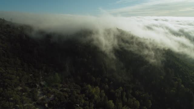 vidéos et rushes de fog moves over mountain in california - brouillard