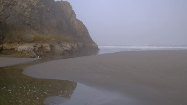 fog obscures oregon's rugged coast. - heceta head stock videos & royalty-free footage