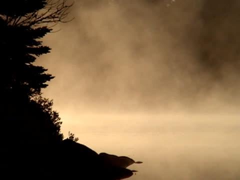 霧の湖 - 有名原生地域点の映像素材/bロール