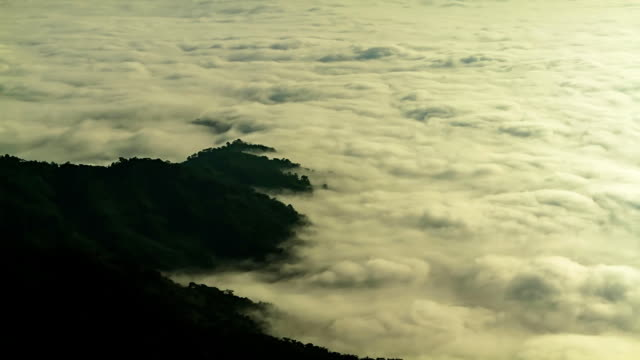 vídeos de stock e filmes b-roll de nevoeiro nas montanhas da tailândia. (timelapse) - ajardinado