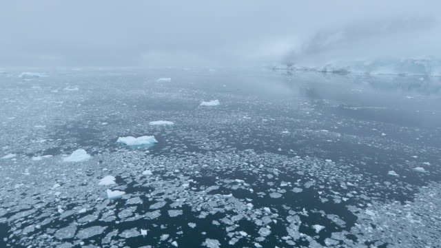 fog over brash ice on water - antarctic peninsula stock videos & royalty-free footage