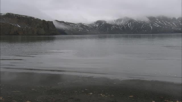 ms, pan, fog over coastline, deception island, antarctica - antarctic ocean stock videos & royalty-free footage