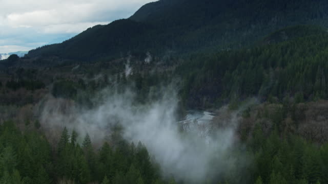 stockvideo's en b-roll-footage met mist over rivier, spoor en weg in skykomish national forest-drone shot - wildernis