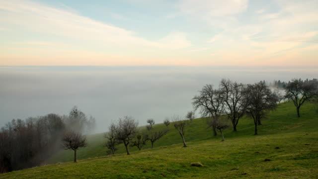 T/L Nebel über die Landschaft