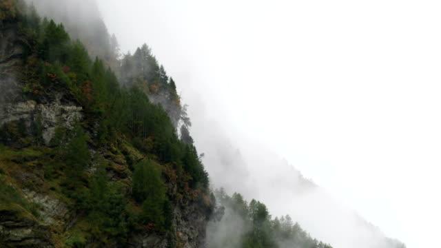 霧の上にそびえ立つ山森林公園 tl - 水の形態点の映像素材/bロール