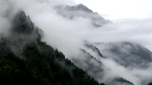 Fog Rising Up Above Mountain Forest TL