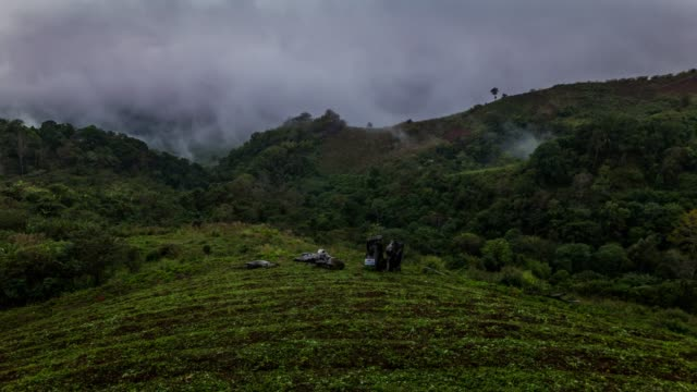 fog rolls across flowing over mountains,time lapse - chiang rai province stock videos and b-roll footage
