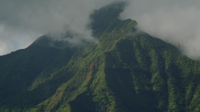 fog rolls over the peak of a volcano in kauai, hawaii. - isola di kauai video stock e b–roll