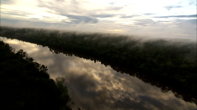 stockvideo's en b-roll-footage met fog settles above the amazonian rainforest and the amazon river. available in hd. - latijns amerika