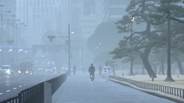 fog shrouded forecourt of imperial palace, tokyo, japan - routine stock videos & royalty-free footage