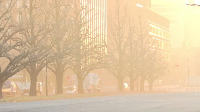 Fog Shrouded Tokyo In Morning Sunlight, Japan