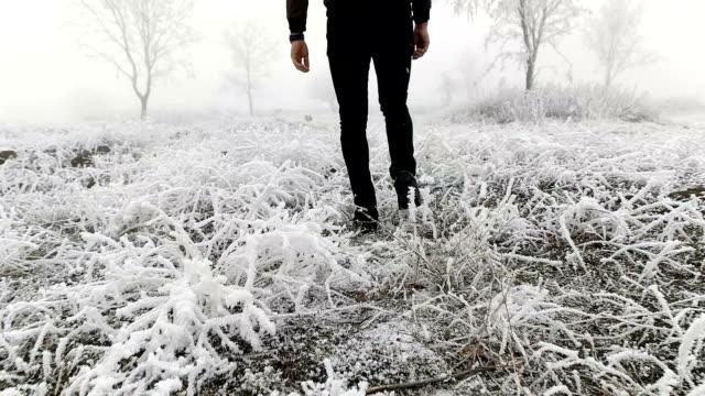 SLOW MOT - Fog Walk in winter wood