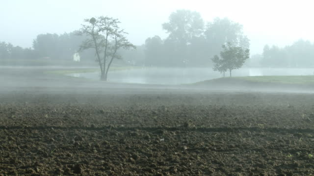hd dolly: foggy countryside - plowed field stock videos & royalty-free footage