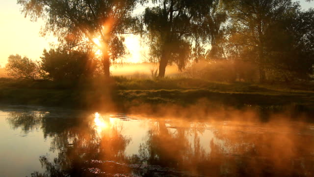 foggy dawn over a beautiful spring river - 30 seconds or greater stock videos & royalty-free footage