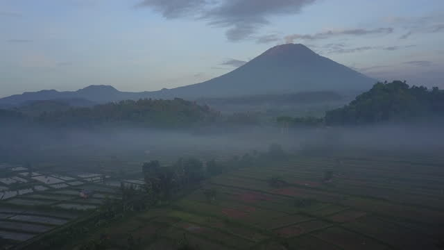 foggy field and rice paddy with mountain / bali, indonesia - ominous stock videos & royalty-free footage