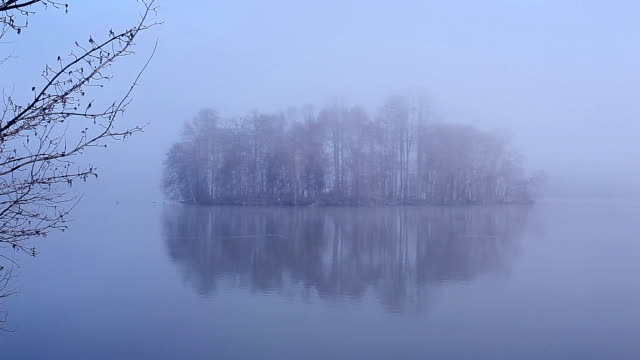 foggy island and lake in reflection in the morning - copse stock videos and b-roll footage