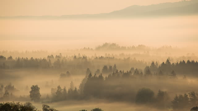 foggy landscape - hill stock videos & royalty-free footage