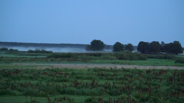 草原の霧の朝 - ロマンチックな空点の映像素材/bロール