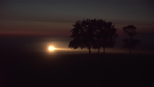 川沿いの霧の朝。イルミネーションツリー - ロマンチックな空点の映像素材/bロール