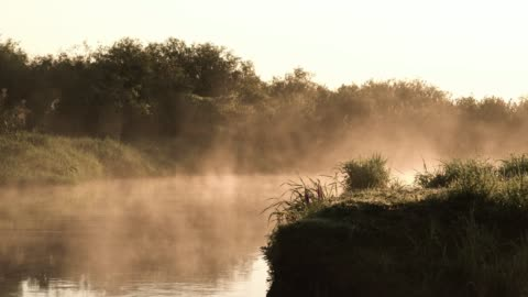 foggy morning on a riverside - condensation stock videos & royalty-free footage