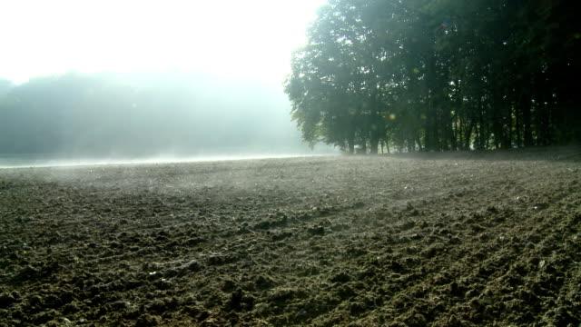 hd dolly: foggy plowed field along the forest - plowed field stock videos & royalty-free footage