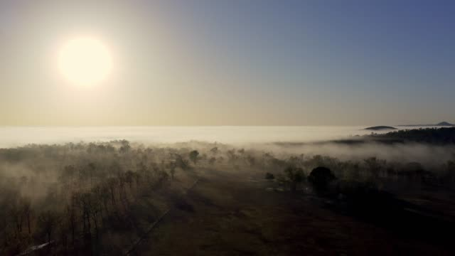 foggy sunrise - high up stock videos & royalty-free footage