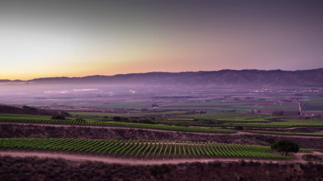 foggy sunset in california wine country - day to night time lapse - patchwork landscape stock videos and b-roll footage