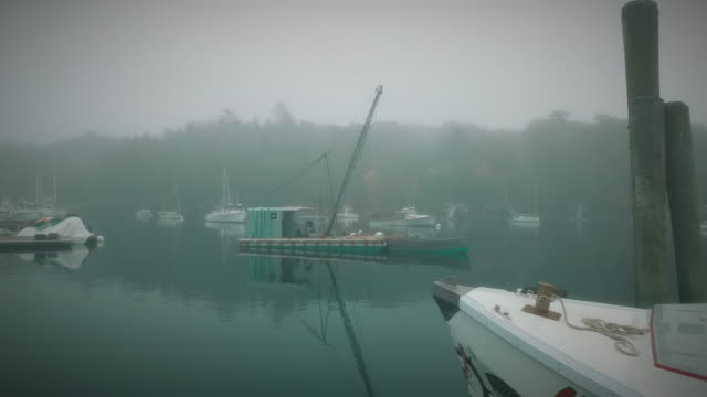 a fogy morning in a small fisherman's village in eastern maine - crustacean stock videos & royalty-free footage