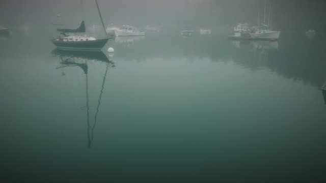a fogy morning in a small fisherman's village in eastern maine - lobster stock videos & royalty-free footage