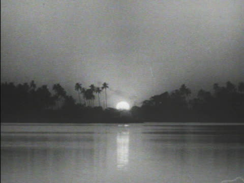 vídeos de stock, filmes e b-roll de foliage tall palm trees in silhouette on opposite water bank thin smoke rising from darkness sun setting moving down behind trees river lake waterway... - moving activity