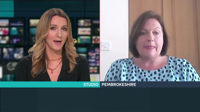 folic acid to be added to flour to prevent spinal defects in babies; england: london: gir: int kate steele live 2-way interview from pembrokeshire sot - spine stock videos & royalty-free footage
